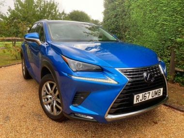 Used LEXUS NX in Horsham, West Sussex for sale